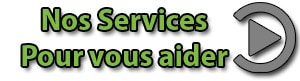 roqya_services